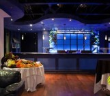 Deep Blue Ultra Lounge Grand Opening