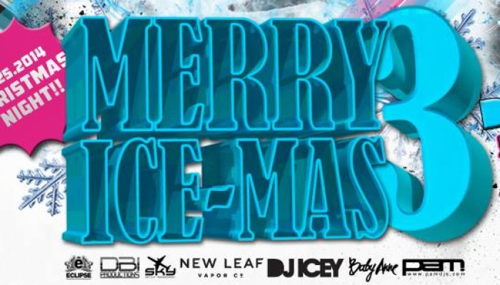 Holiday Party 2015: DJ Icey & Baby Anne on Christmas Night